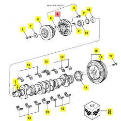 Демпфер двигателя - 81876963